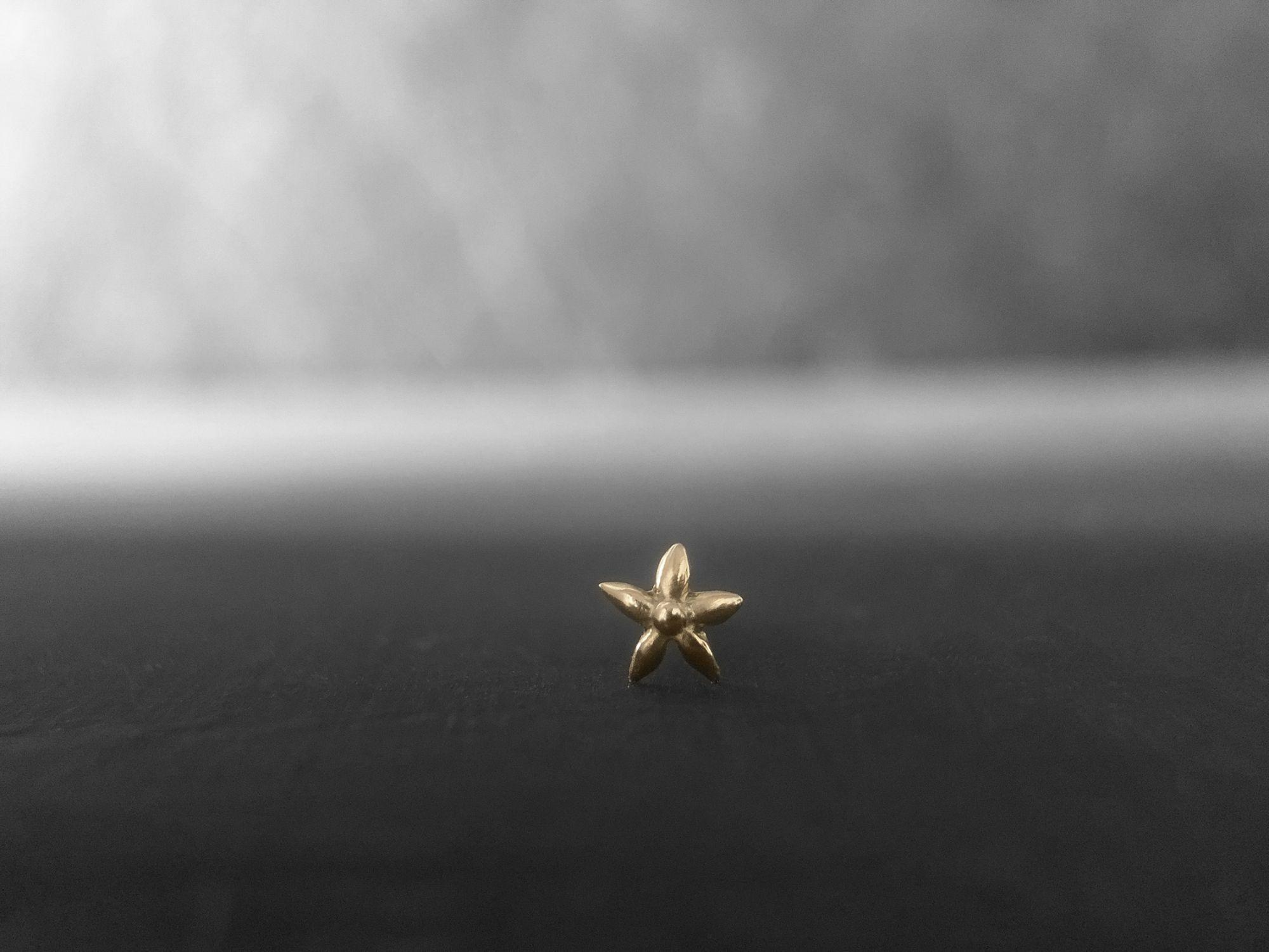 Edelweiss gold stud earring PM by Emmanuelle Zysman