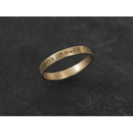 Omnia Vincit small ring by Emmanuelle Zysman