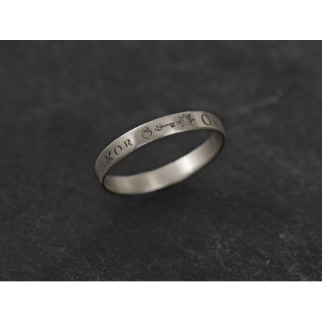 Omnia Vincit small white gold ring for men by Emmanuelle Zysman