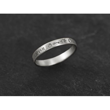 Omnia Vincit small silver ring for men by Emmanuelle Zysman