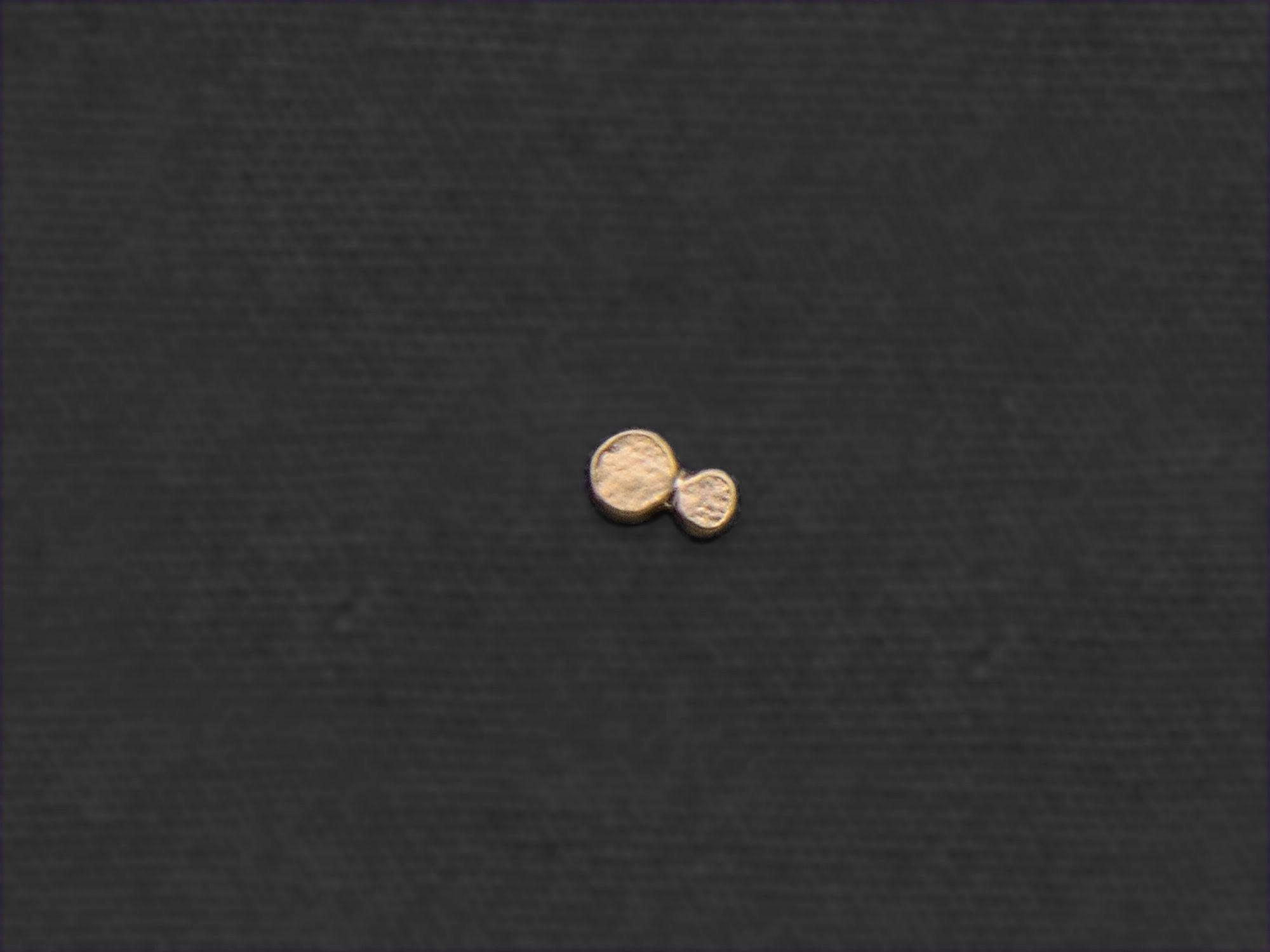 Bubbles mini stud earring by Emmanuelle Zysman